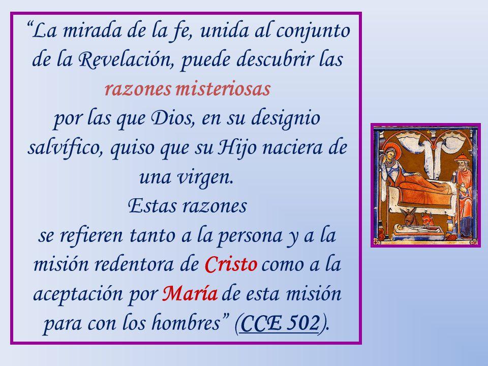 La mirada de la fe, unida al conjunto de la Revelación, puede descubrir las razones misteriosas