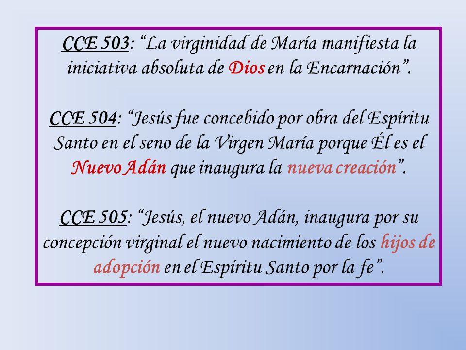 CCE 503: La virginidad de María manifiesta la iniciativa absoluta de Dios en la Encarnación .