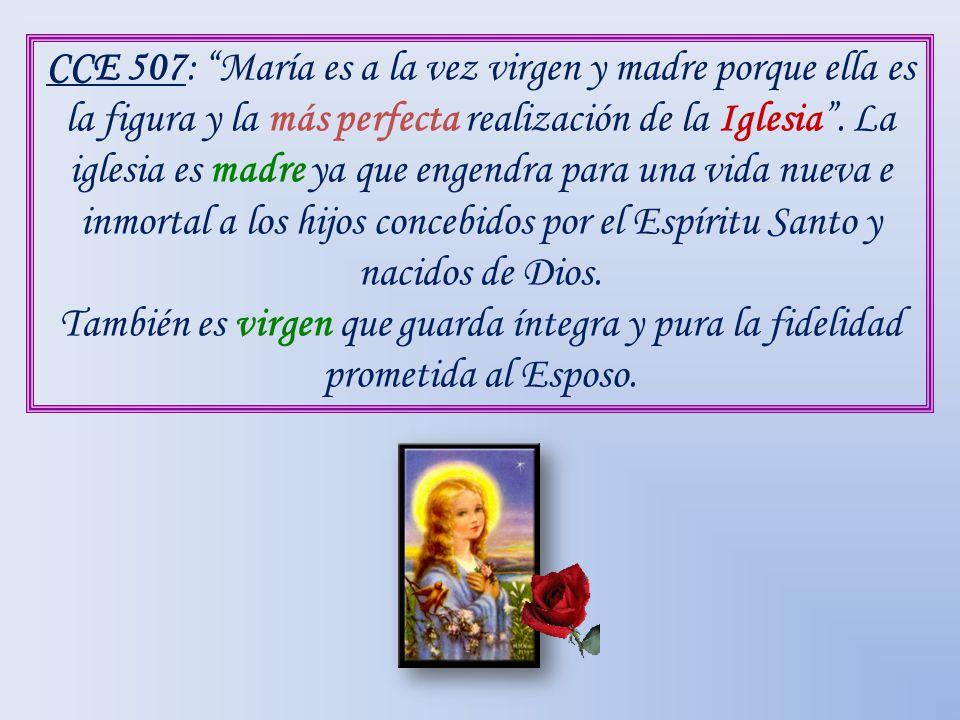 CCE 507: María es a la vez virgen y madre porque ella es la figura y la más perfecta realización de la Iglesia . La iglesia es madre ya que engendra para una vida nueva e inmortal a los hijos concebidos por el Espíritu Santo y nacidos de Dios.
