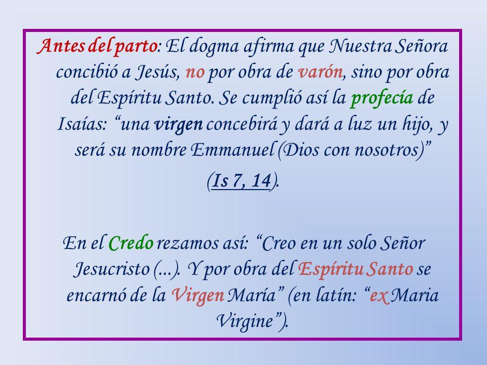 Antes del parto: El dogma afirma que Nuestra Señora concibió a Jesús, no por obra de varón, sino por obra del Espíritu Santo.