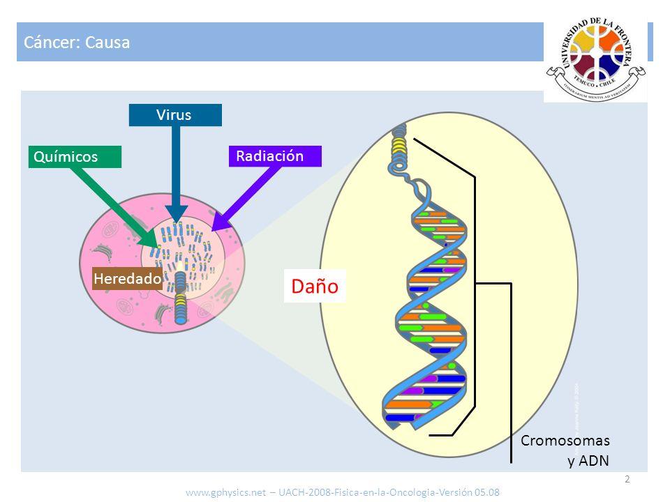 Daño Cáncer: Causa Virus Químicos Radiación Heredado Cromosomas y ADN