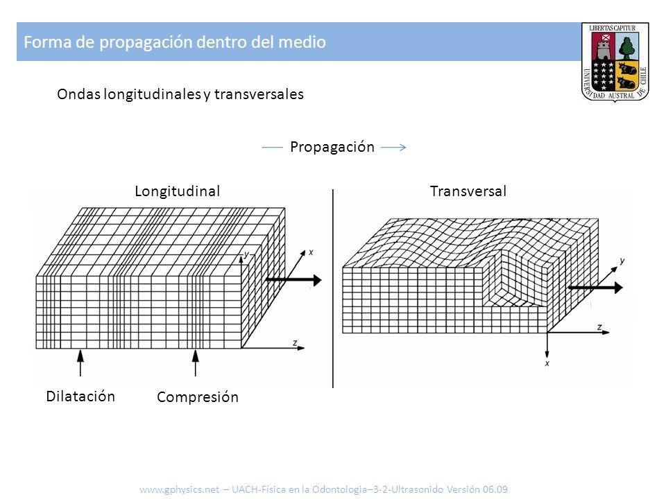 Forma de propagación dentro del medio