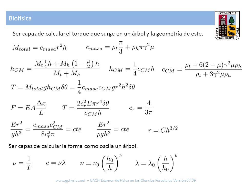 Biofísica Ser capaz de calcular el torque que surge en un árbol y la geometría de este. Ser capaz de calcular la forma como oscila un árbol.