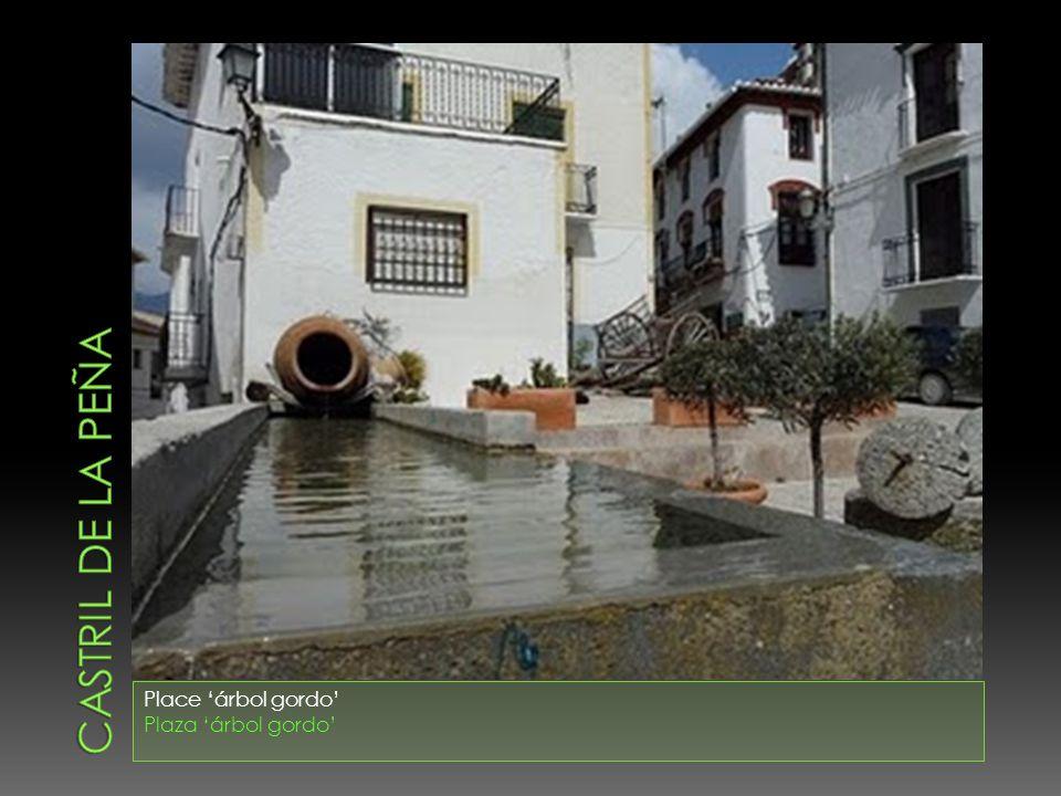 CASTRIL DE LA PEÑA Place 'árbol gordo' Plaza 'árbol gordo'