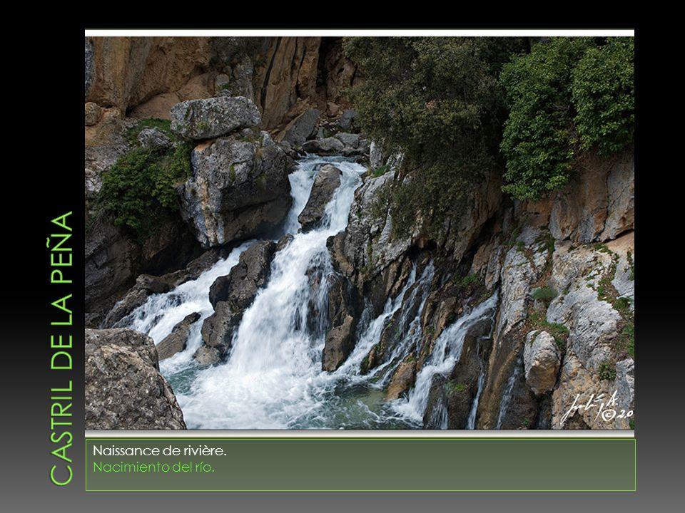 CASTRIL DE LA PEÑA Naissance de rivière. Nacimiento del río.
