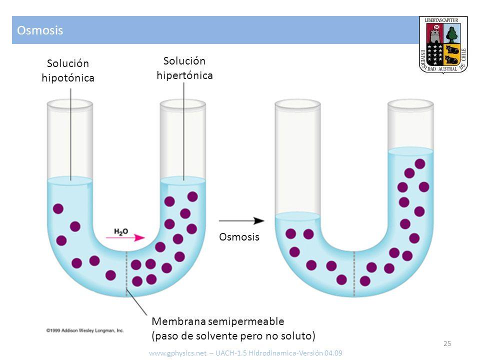 Osmosis Solución Solución hipertónica hipotónica Osmosis