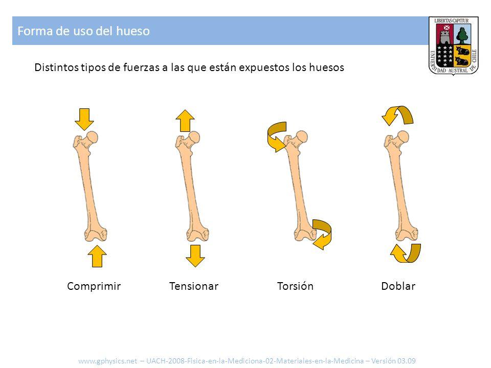 Forma de uso del huesoDistintos tipos de fuerzas a las que están expuestos los huesos. Comprimir. Tensionar.