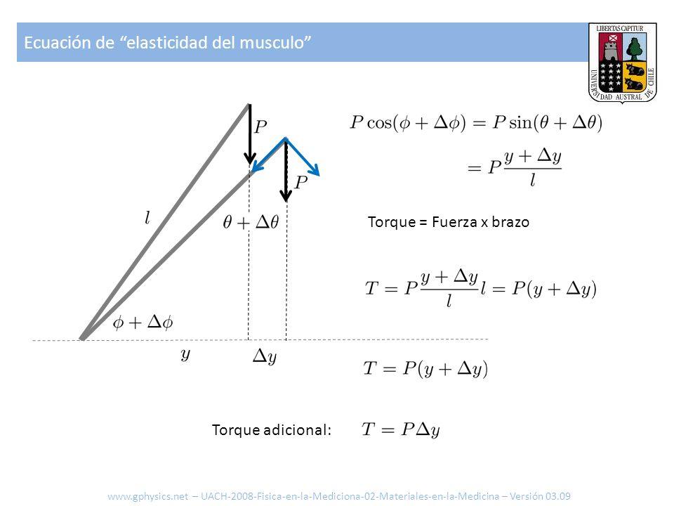 Ecuación de elasticidad del musculo