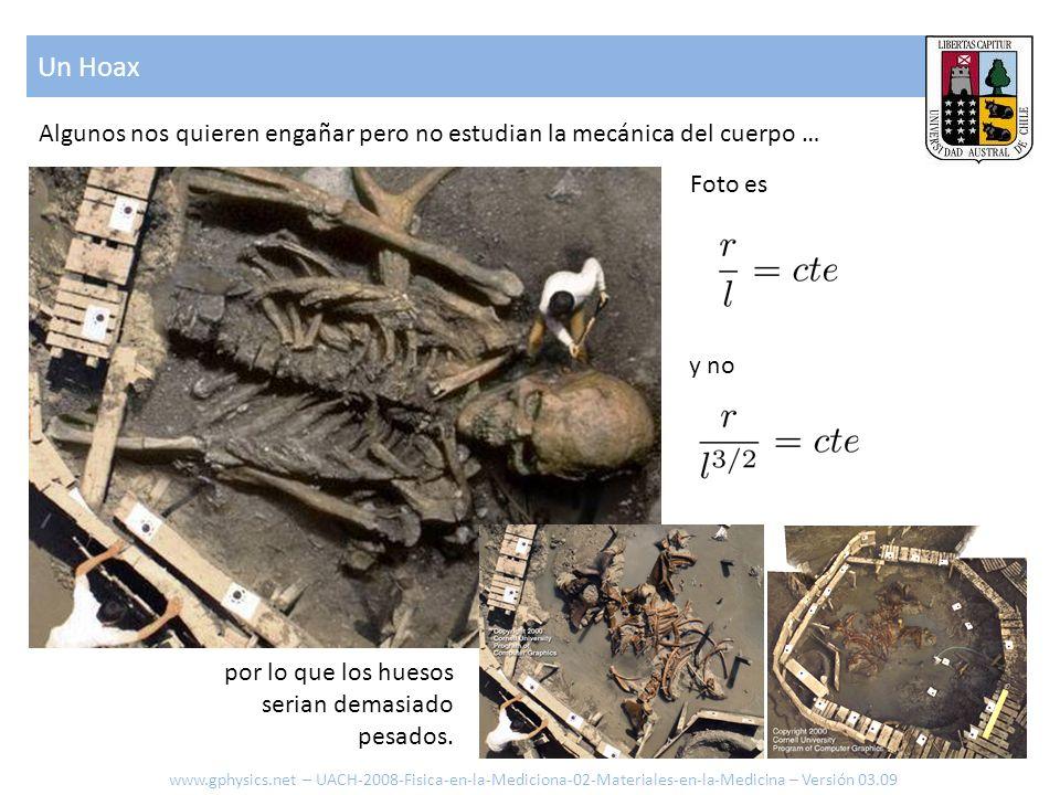 Un Hoax Algunos nos quieren engañar pero no estudian la mecánica del cuerpo … Foto es. y no. por lo que los huesos.