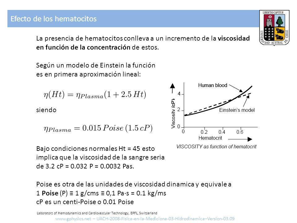 Efecto de los hematocitos