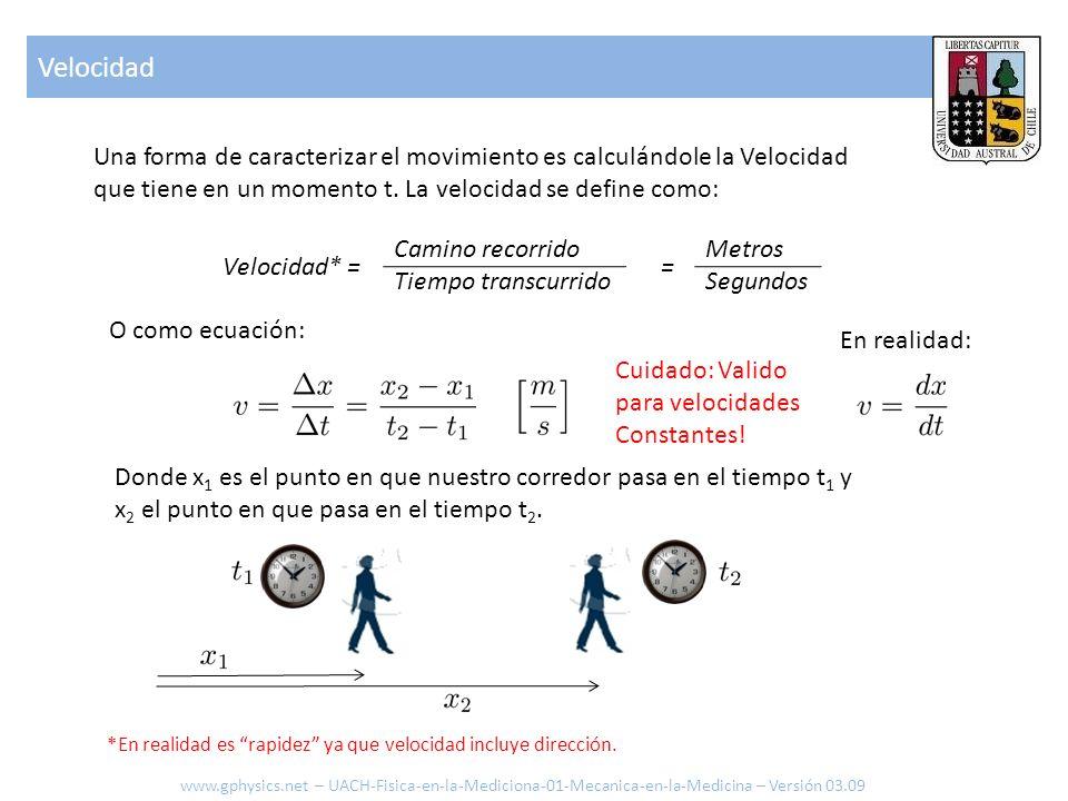 Velocidad Una forma de caracterizar el movimiento es calculándole la Velocidad. que tiene en un momento t. La velocidad se define como: