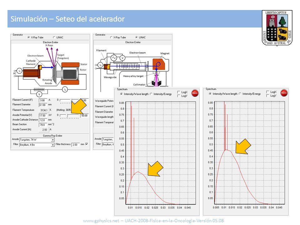 Simulación – Seteo del acelerador