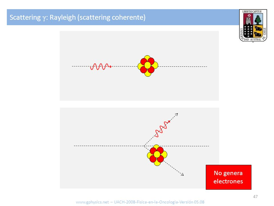 Scattering γ: Rayleigh (scattering coherente)
