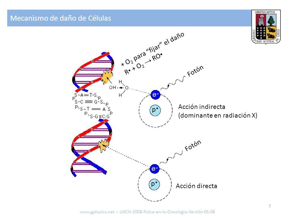 Mecanismo de daño de Células