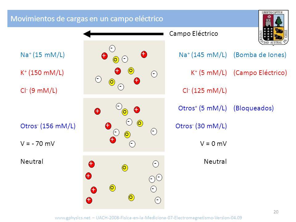 Movimientos de cargas en un campo eléctrico