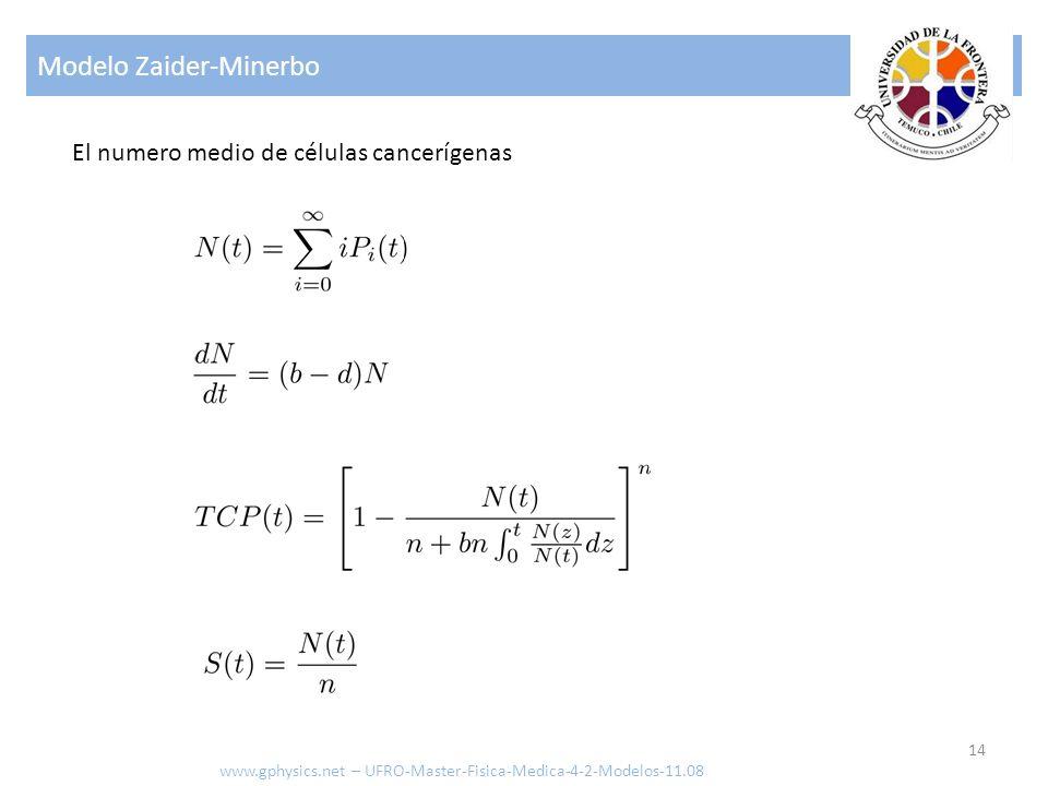Modelo Zaider-Minerbo