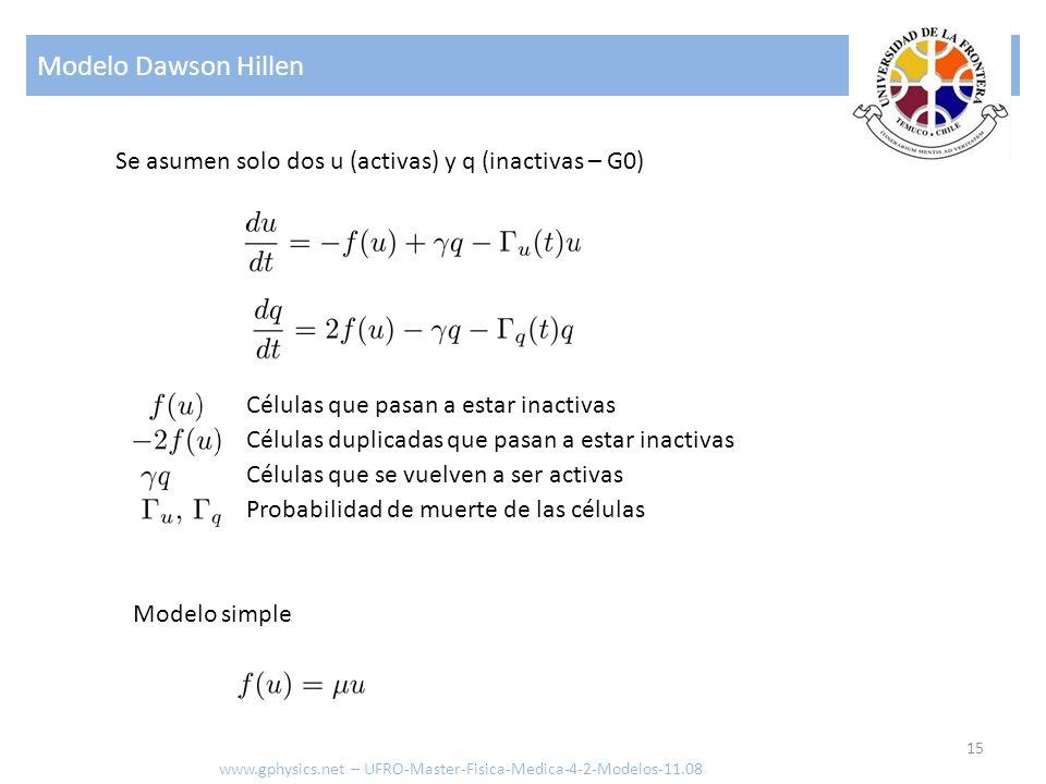 Modelo Dawson Hillen Se asumen solo dos u (activas) y q (inactivas – G0) Células que pasan a estar inactivas.