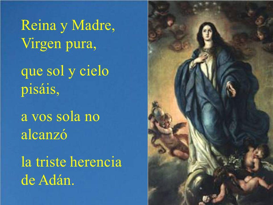 Reina y Madre, Virgen pura,