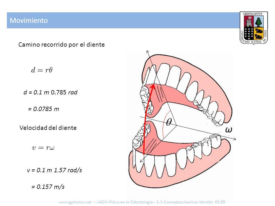  ω Movimiento Camino recorrido por el diente d = 0.1 m 0.785 rad