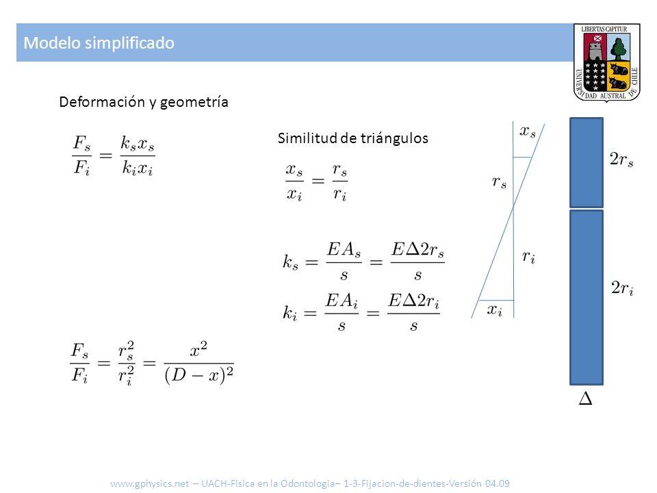 Modelo simplificado Deformación y geometría Similitud de triángulos