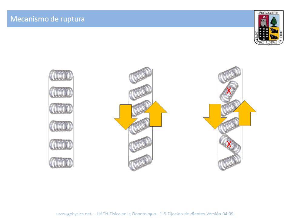 X X Mecanismo de ruptura