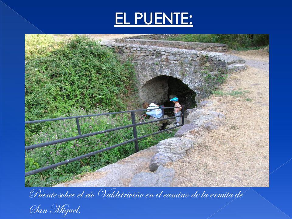 EL PUENTE: Puente sobre el río Valdetriviño en el camino de la ermita de San Miguel.