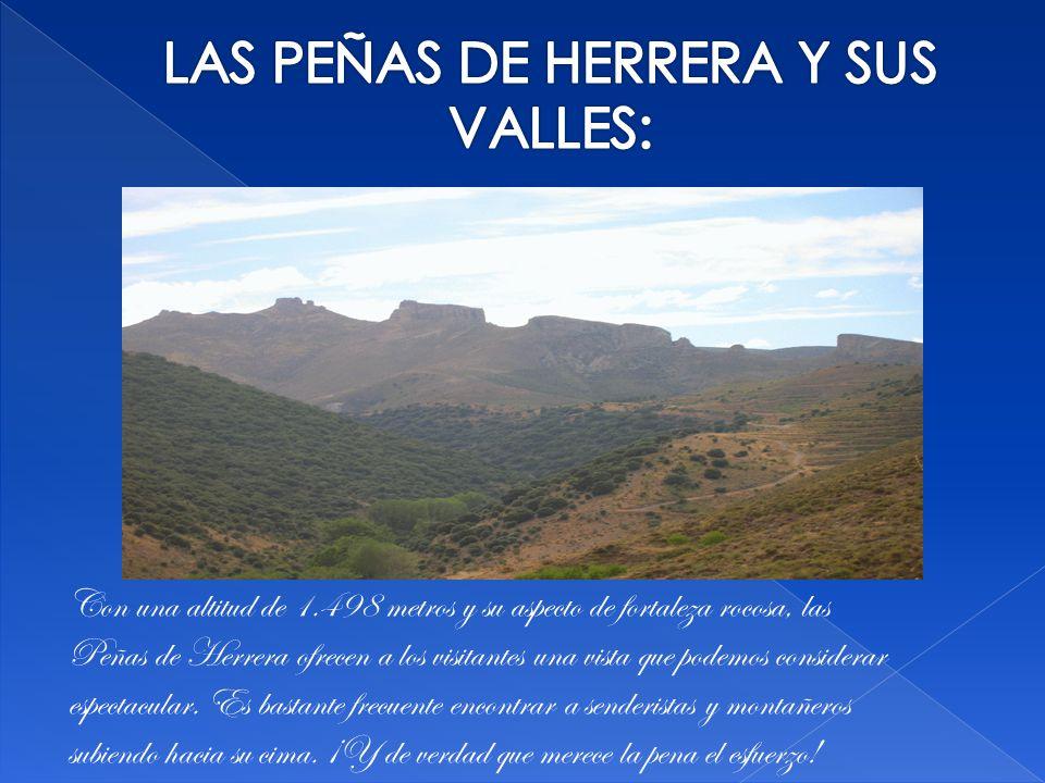 LAS PEÑAS DE HERRERA Y SUS VALLES: