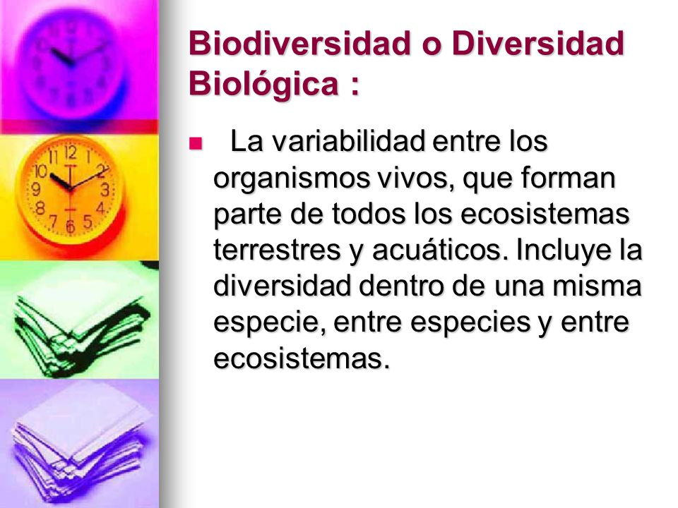 Biodiversidad o Diversidad Biológica :