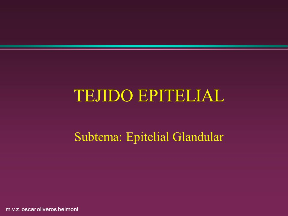 Subtema: Epitelial Glandular