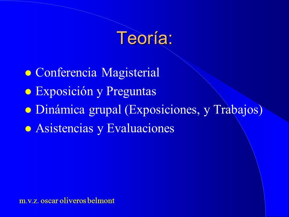 Teoría: Conferencia Magisterial Exposición y Preguntas