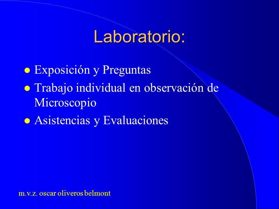 Laboratorio: Exposición y Preguntas