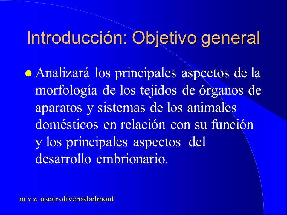 Introducción: Objetivo general