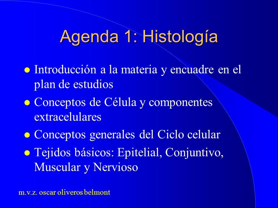 Agenda 1: Histología Introducción a la materia y encuadre en el plan de estudios. Conceptos de Célula y componentes extracelulares.