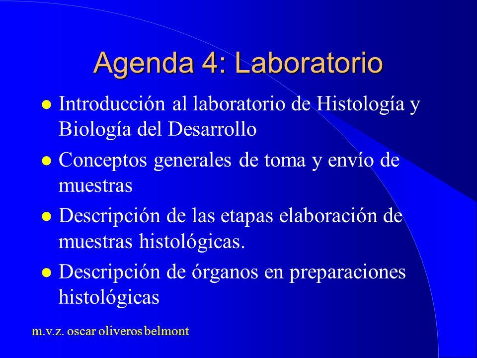 Agenda 4: Laboratorio Introducción al laboratorio de Histología y Biología del Desarrollo. Conceptos generales de toma y envío de muestras.