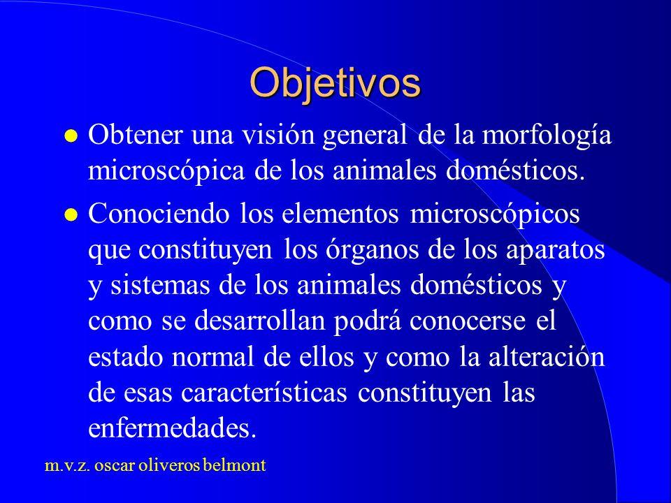 Objetivos Obtener una visión general de la morfología microscópica de los animales domésticos.