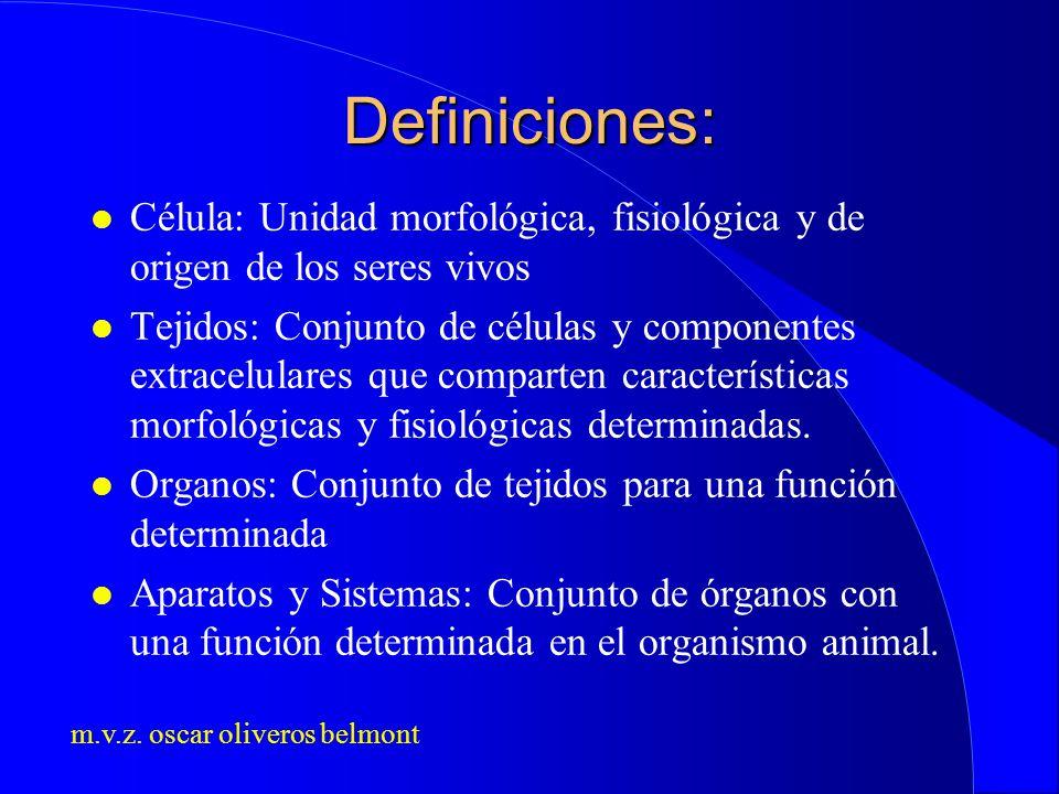 Definiciones: Célula: Unidad morfológica, fisiológica y de origen de los seres vivos.