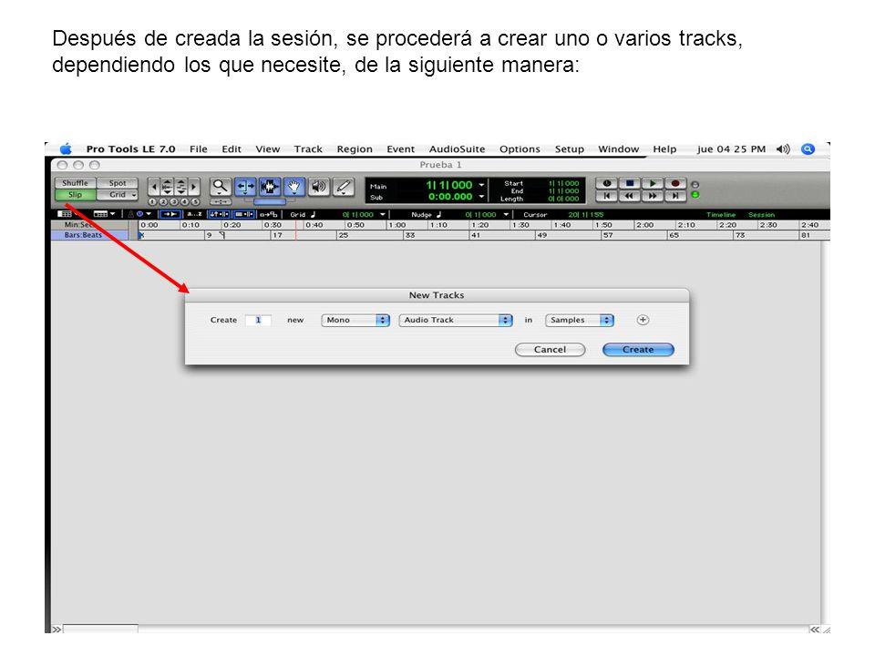 Después de creada la sesión, se procederá a crear uno o varios tracks,