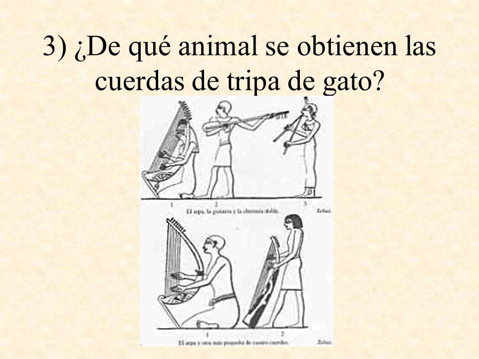 3) ¿De qué animal se obtienen las cuerdas de tripa de gato