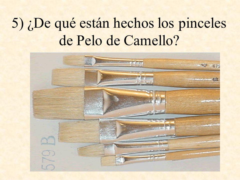 5) ¿De qué están hechos los pinceles de Pelo de Camello