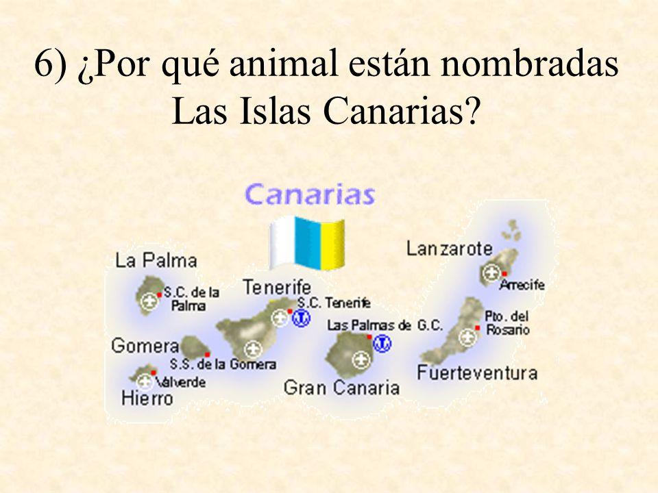 6) ¿Por qué animal están nombradas Las Islas Canarias