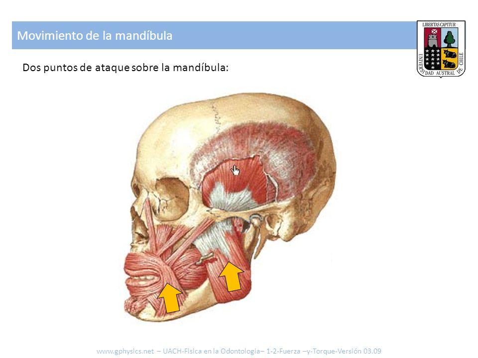 Movimiento de la mandíbula