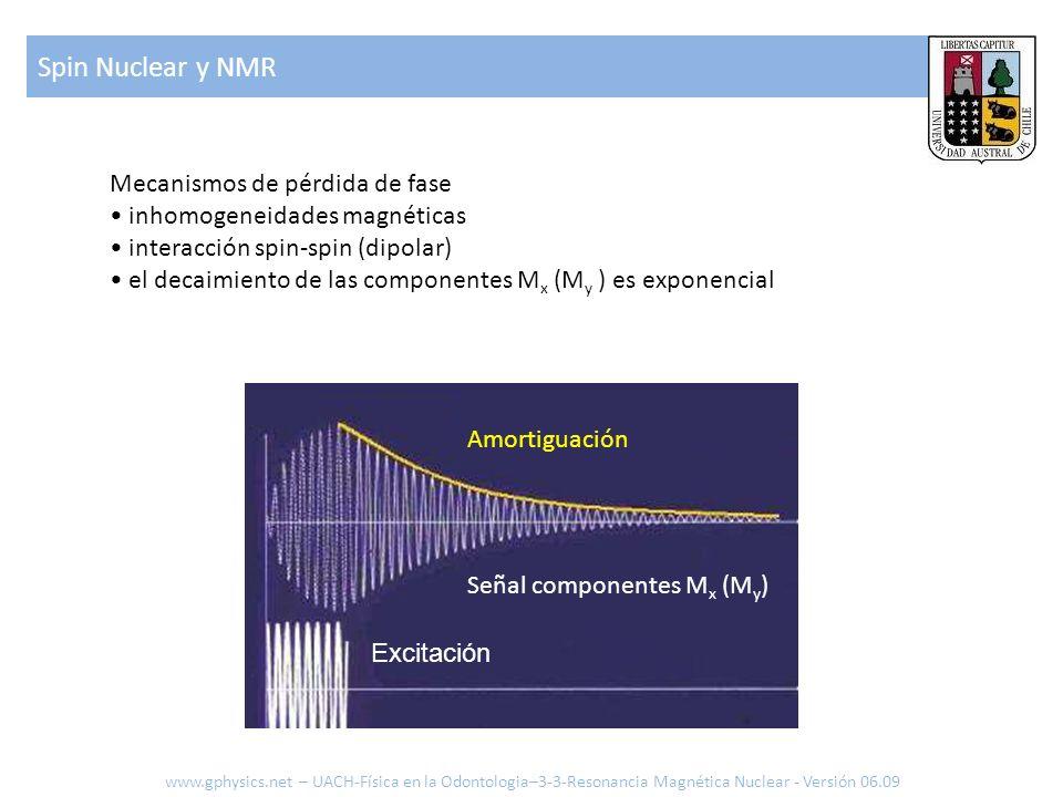 Spin Nuclear y NMR Mecanismos de pérdida de fase