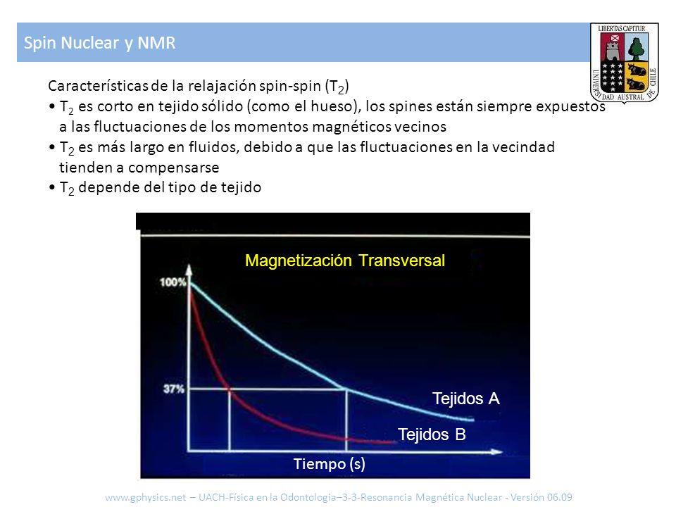 Spin Nuclear y NMR Características de la relajación spin-spin (T2)