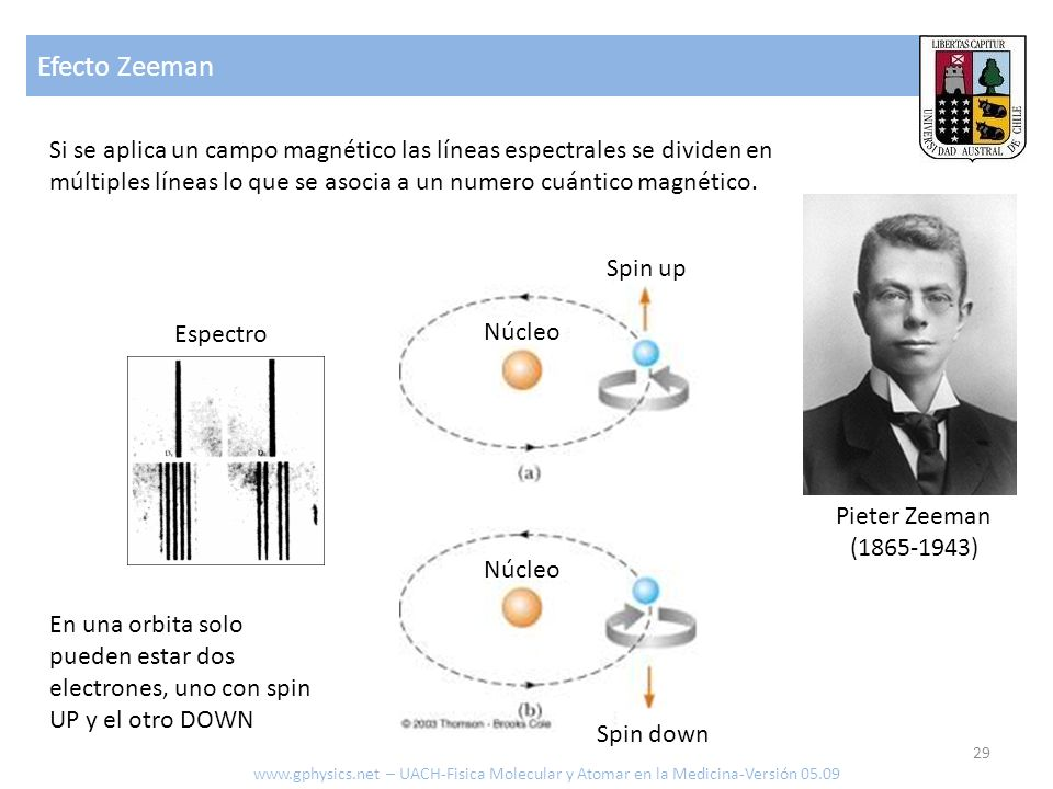 Efecto Zeeman Si se aplica un campo magnético las líneas espectrales se dividen en múltiples líneas lo que se asocia a un numero cuántico magnético.