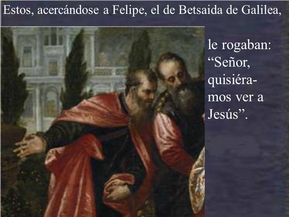 le rogaban: Señor, quisiéra-mos ver a Jesús .