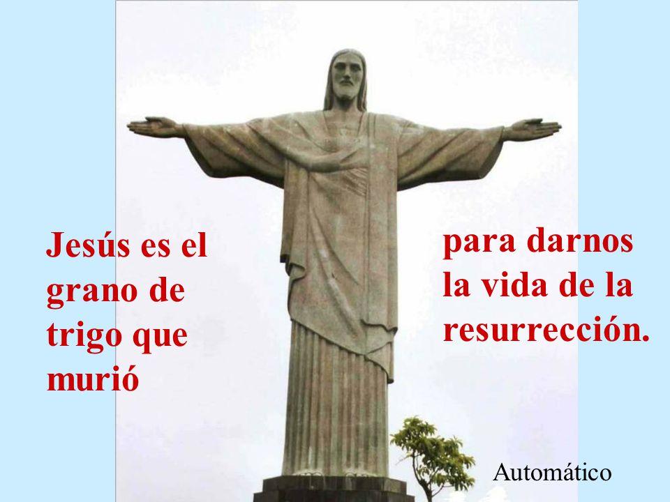 para darnos la vida de la resurrección.