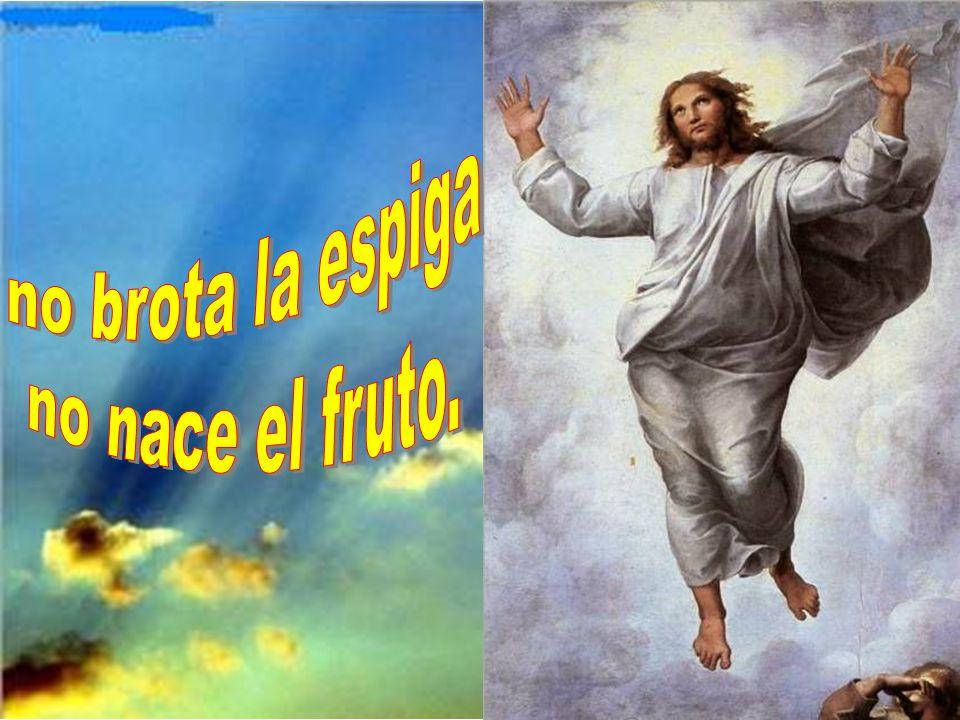 no brota la espiga no nace el fruto.