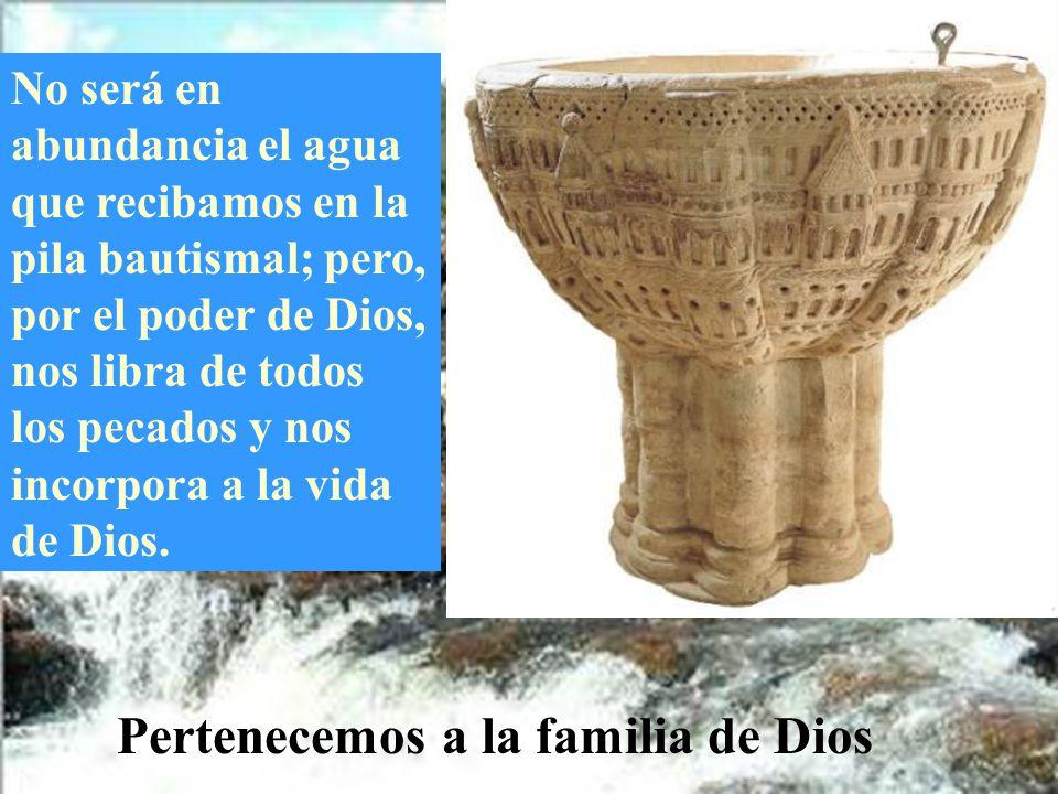 Pertenecemos a la familia de Dios