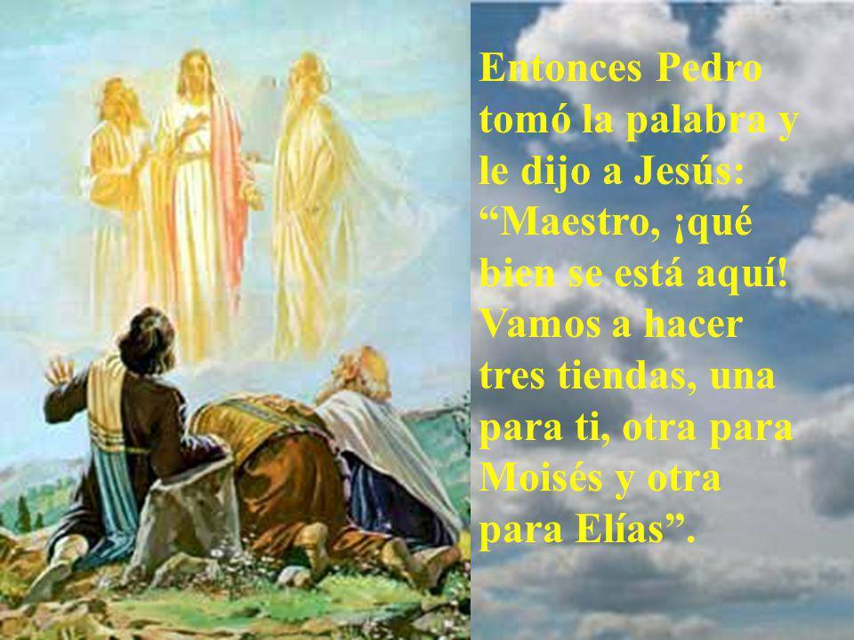 Entonces Pedro tomó la palabra y le dijo a Jesús: Maestro, ¡qué bien se está aquí.