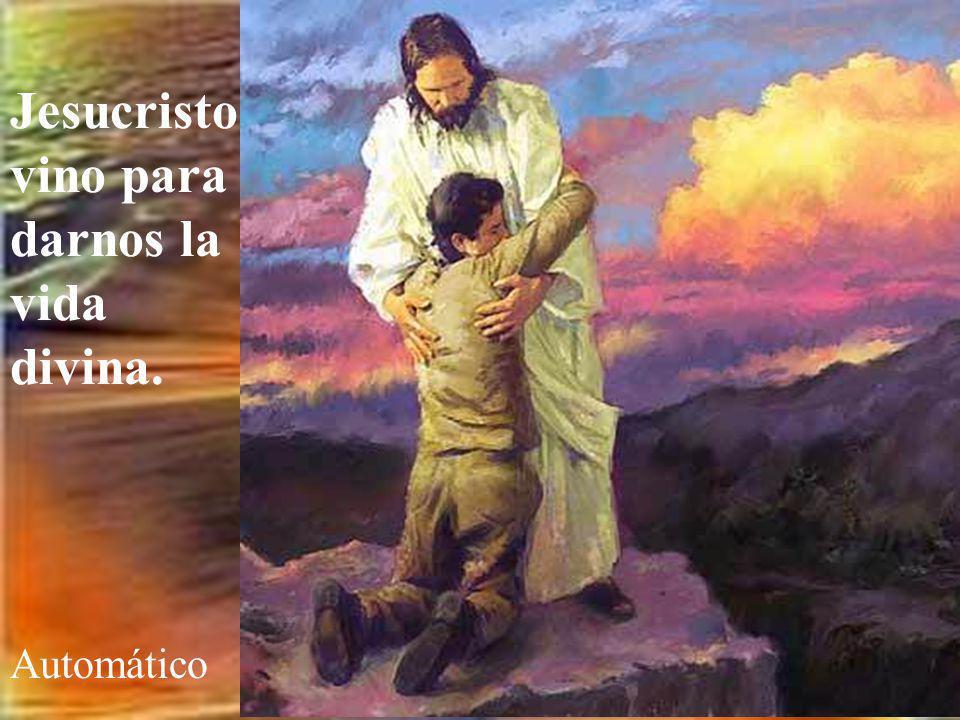 Jesucristo vino para darnos la vida divina.